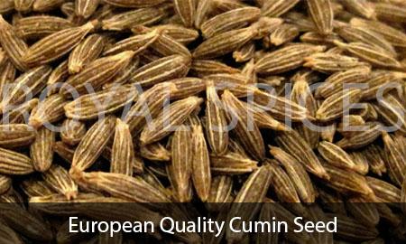 European Quality Cumin Seed