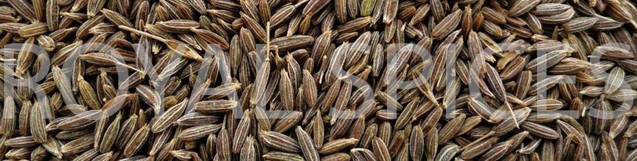Gulf Quality Cumin Seed