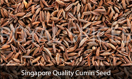 Singapore Quality Cumin Seed