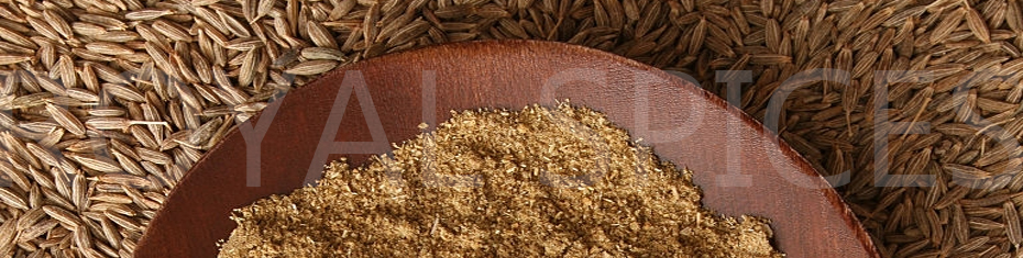 Grinding Quality Cumin Seed